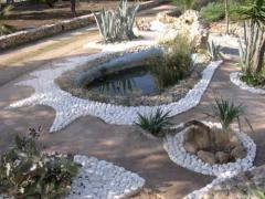 Fontana con stagno