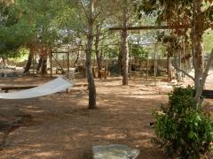 Il parco in pineta